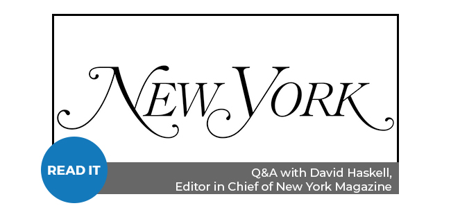 Q&A with David Haskell, Editor in Chief of New York Magazine