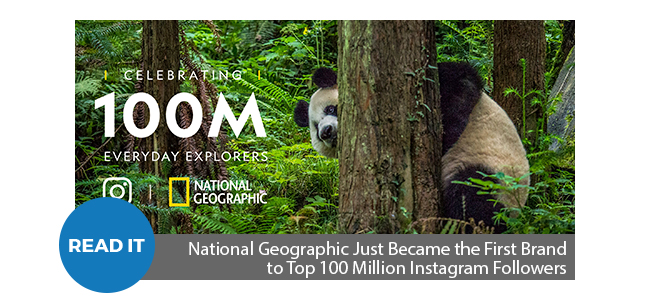 National Geographic Just Became the First Brand to Top 100 Million Instagram Followers